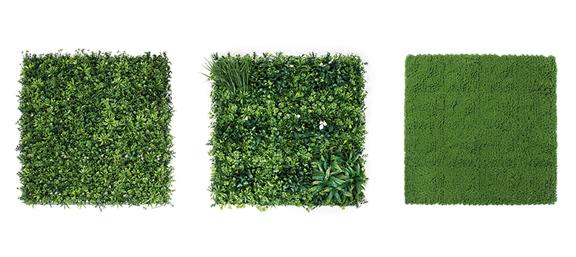 jardin vertical catral