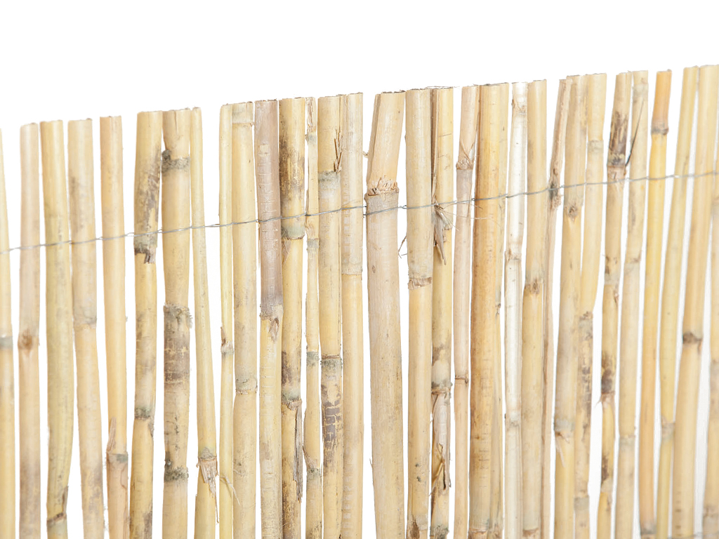 HALF CANE SCREENING FENCE