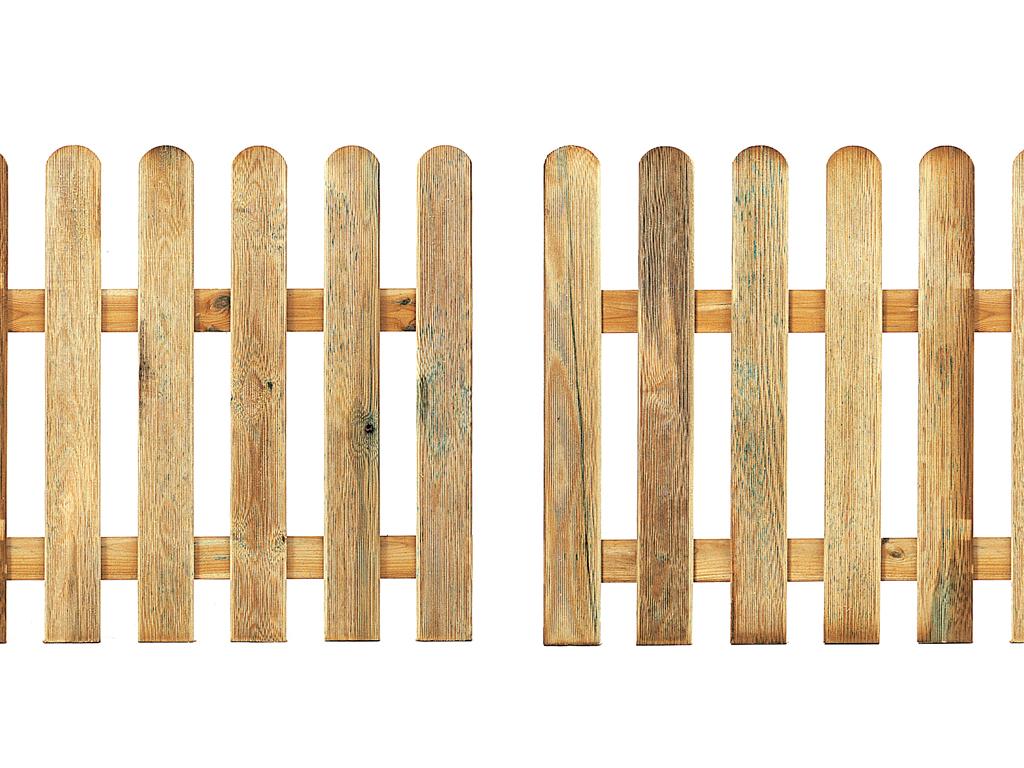 Puerta Vehículos