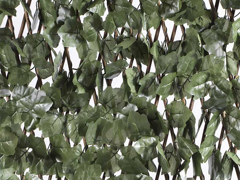 Extendable trellis with leaves basic