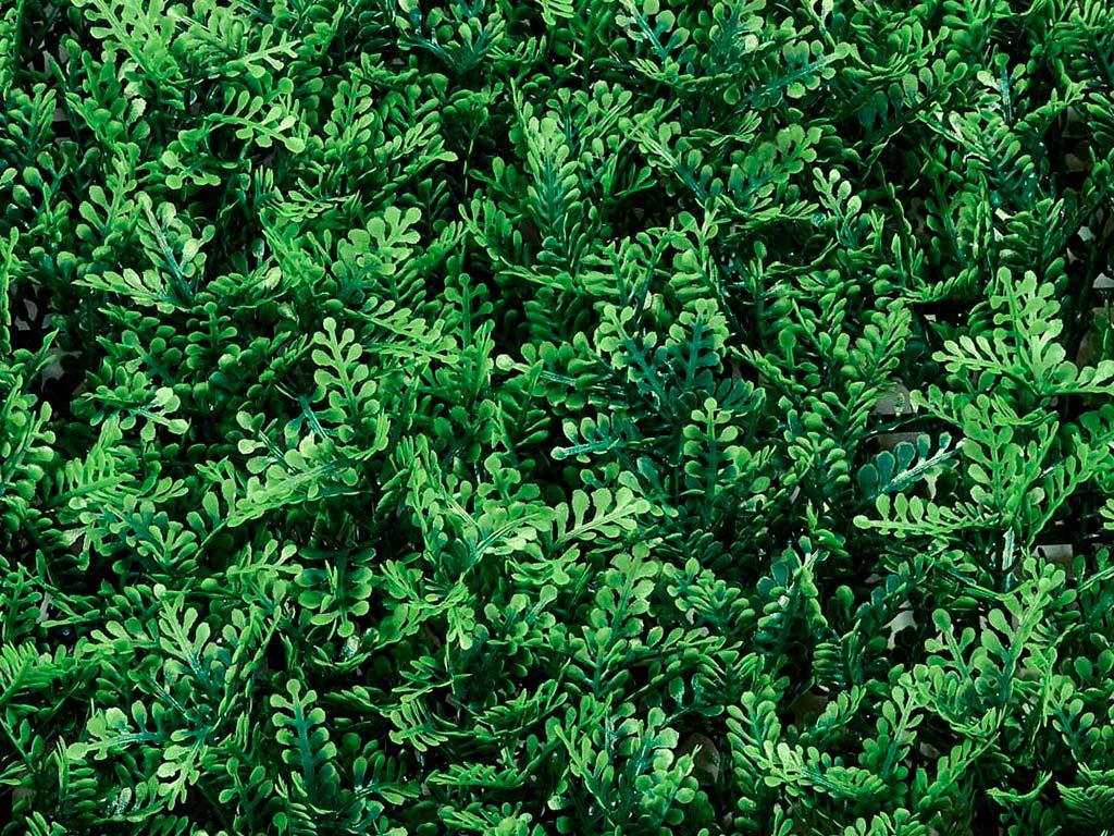 Jardín vertical LINK