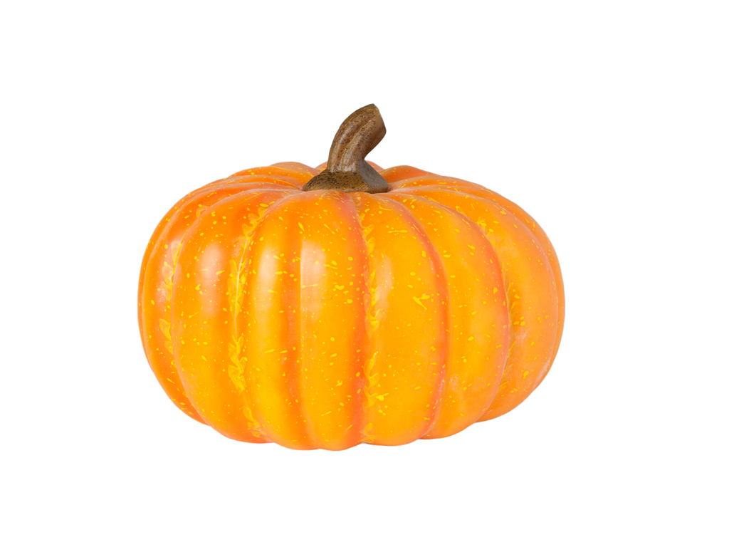 Small American pumpkin