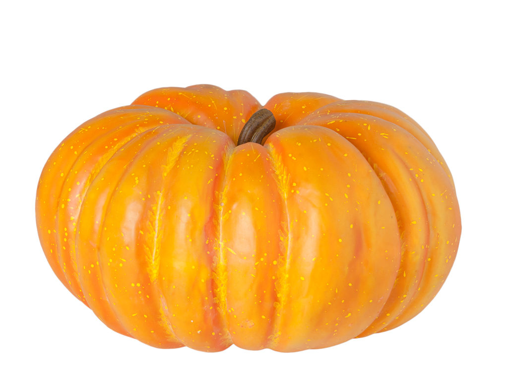Large American pumpkin