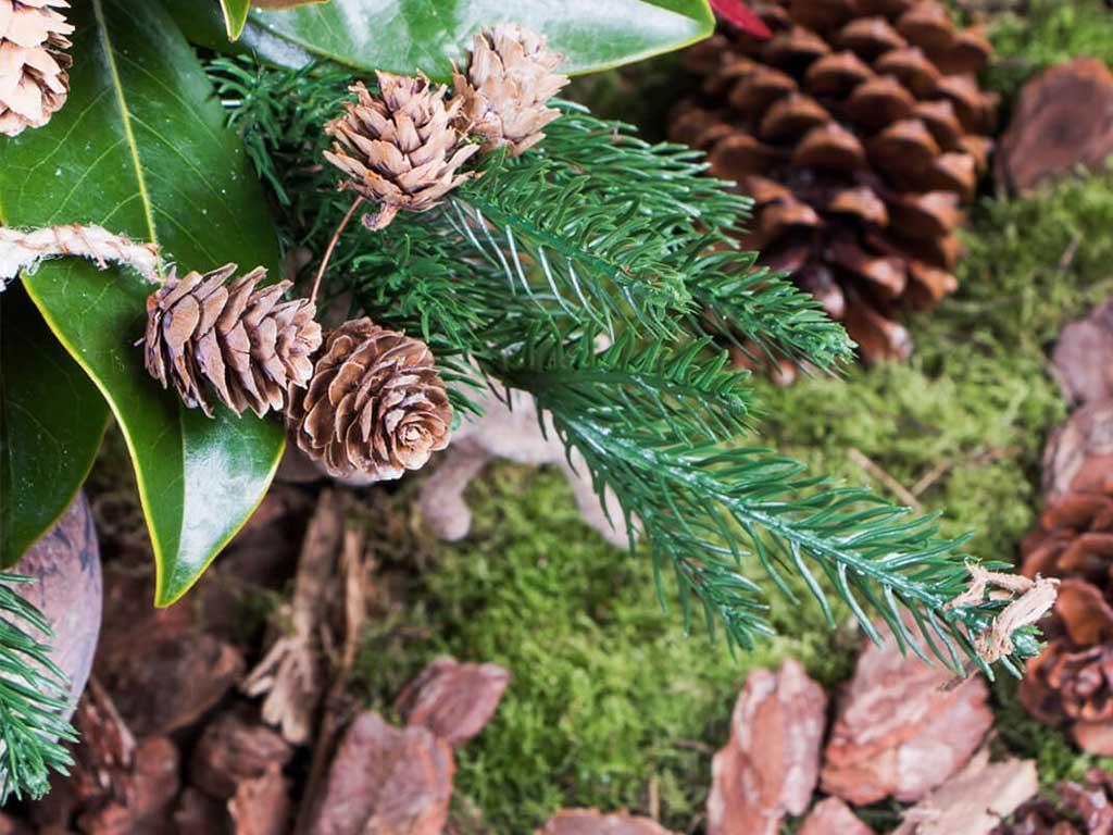 Árbol de Navidad BUD