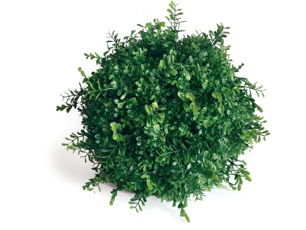 Esfera Decorativa Boj Silvestre