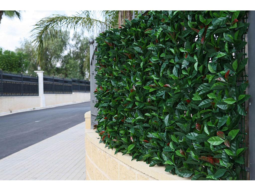 Jard n vertical con hojas de eucalipto for Aspiradora de hojas para jardin
