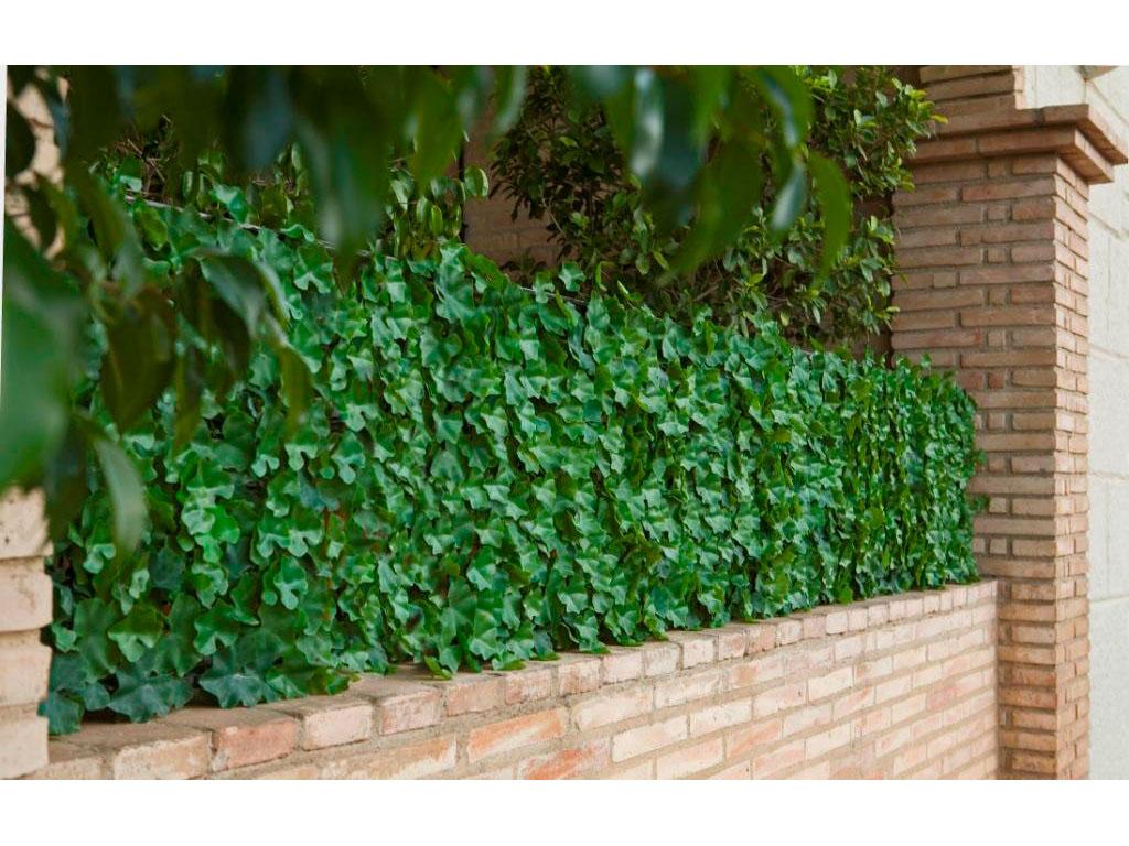 jard n vertical con hojas de geranio verde