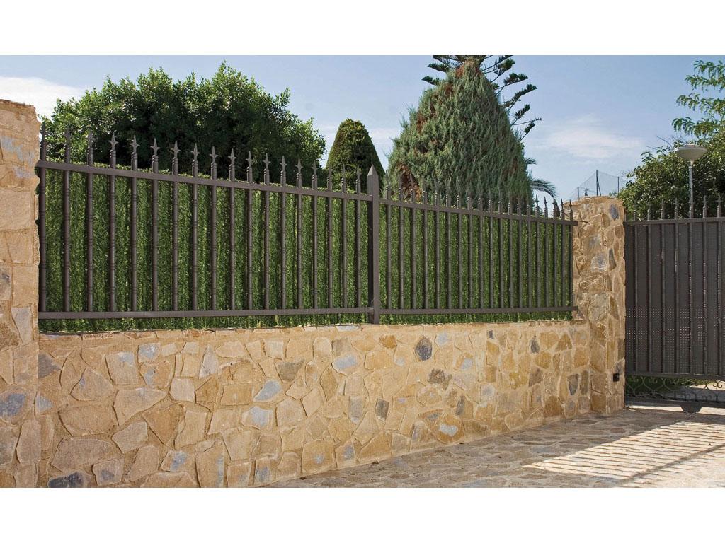 Seto fino para jardines catral for Cerramientos de jardines fotos